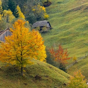 Travel to Romania – Autumn in Fundata & Moieciu de Sus