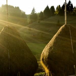 Rural Romania: Fundata and Moieciu de Sus